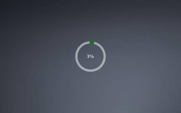 Circular progress bar with %