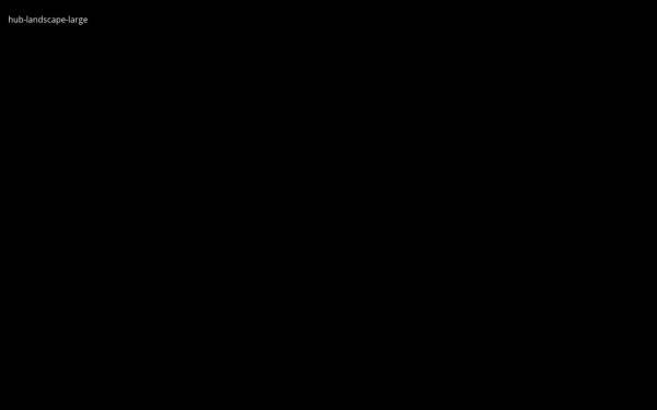 Device viewport profile check